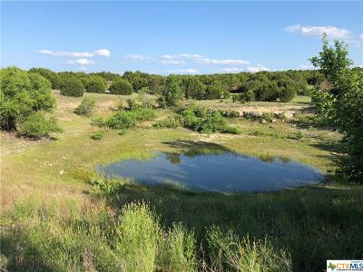 Copperas Cove Residential Lots & Land For Sale: Tbd Tract 2 Duncan Road