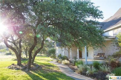 New Braunfels Single Family Home For Sale: 230 River Chase
