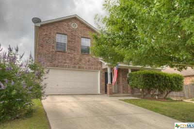 New Braunfels Single Family Home For Sale: 1755 Jasons North Court