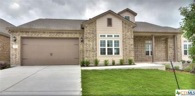 San Marcos Single Family Home For Sale: 120 Dreaming Plum Lane