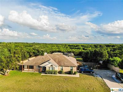 Kempner Single Family Home For Sale: 424 County Road 4711