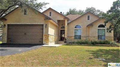 Spring Branch TX Single Family Home For Sale: $273,000