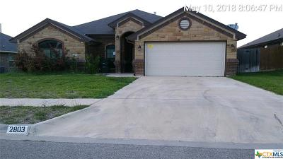 Killeen Single Family Home For Sale: 2803 John Helen Drive