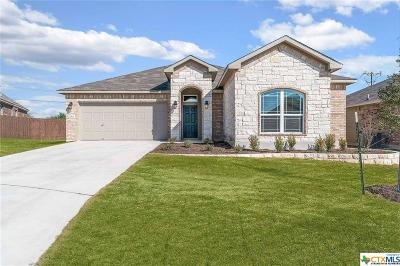 Bell County Single Family Home For Sale: 7314 Boulder Star Way