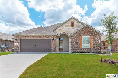 Bell County Single Family Home For Sale: 10211 Becker Drive