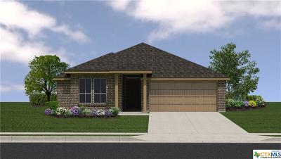 Killeen TX Single Family Home For Sale: $173,210