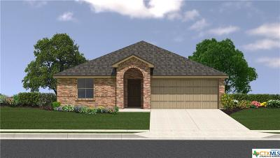 Killeen TX Single Family Home For Sale: $147,465