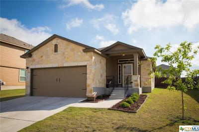 New Braunfels Single Family Home For Sale: 2241 Olive Hill Dr.