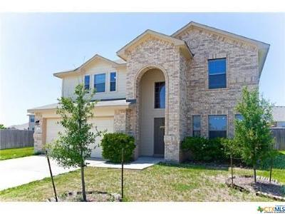 Buda TX Single Family Home For Sale: $249,500