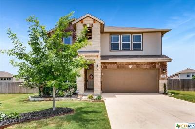 San Antonio Single Family Home For Sale: 5703 McKinney Falls