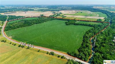 Belton Residential Lots & Land For Sale: Tbd Fm 436