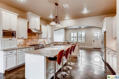 New Braunfels TX Single Family Home For Sale: $320,000