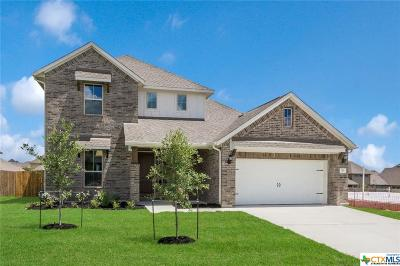 Cibolo Single Family Home For Sale: 812 Silver Fox