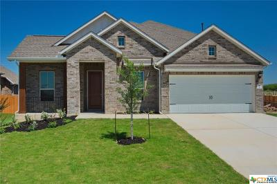 Cibolo Single Family Home For Sale: 917 Foxbrook Way