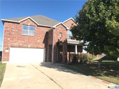 Killeen Single Family Home For Sale: 4201 Snowy River