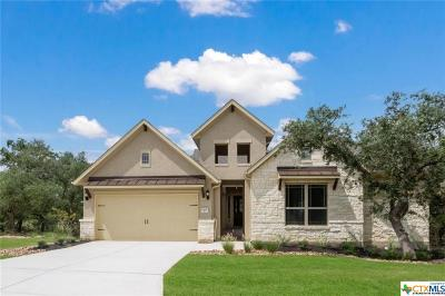 San Antonio Single Family Home For Sale: 1909 Glendon Dr.