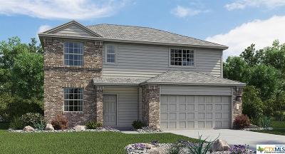 Killeen Single Family Home For Sale: 3810 Endicott
