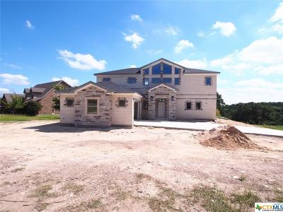 Belton Single Family Home For Sale: 4923 Water Works Road