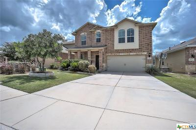 San Antonio Single Family Home For Sale: 9426 Pegasus Run Rd