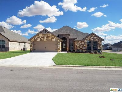 Temple TX Single Family Home For Sale: $229,600