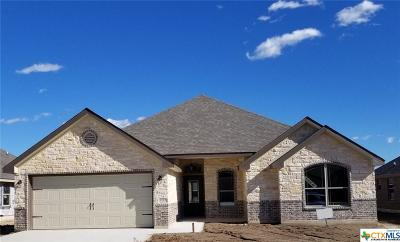 Temple TX Single Family Home For Sale: $214,500