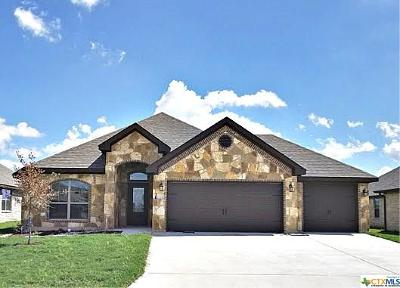 Temple TX Single Family Home For Sale: $237,500
