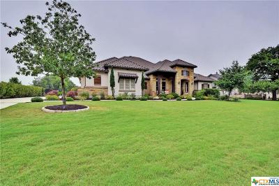 Georgetown Single Family Home For Sale: 113 Fishspear