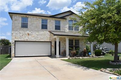Williamson County Single Family Home For Sale: 227 Killian