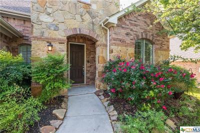 Cedar Park Single Family Home For Sale: 1409 Rimstone