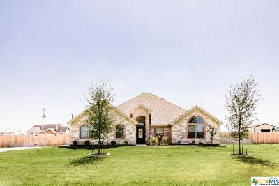 McLennan County Single Family Home For Sale: 178 Ralynn Drive