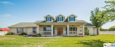 Killeen Single Family Home For Sale: 18242 Fm 2484