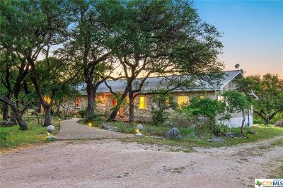 Hays County Single Family Home For Sale: 141 Lookout