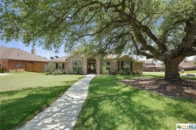 Belton Single Family Home For Sale: 1859 Lacy Ridge Drive