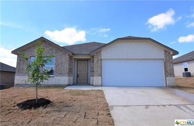 Harker Heights, Killeen, Temple Single Family Home For Sale: 3802 Appalachian Trail