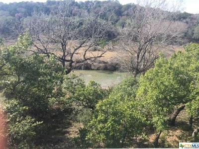 Hays County Single Family Home For Sale: 510 River Rapids