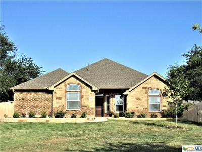Temple Single Family Home For Sale: 316 Shady Oaks Lane