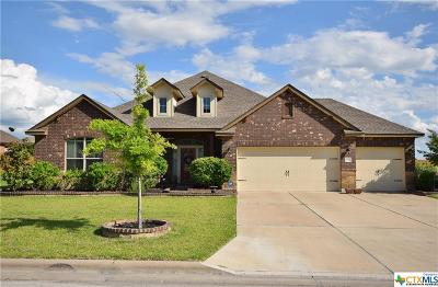 Harker Heights Single Family Home For Sale: 3914 Scenic Trail Drive