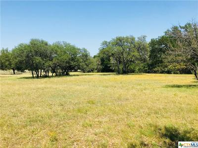 Killeen Residential Lots & Land For Sale: 10653 E Trimmier Lot 2