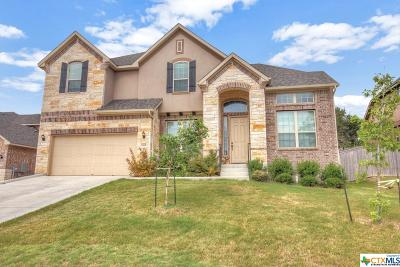 New Braunfels Single Family Home For Sale: 1305 Hidden Cave Drive