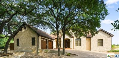 San Marcos Single Family Home For Sale: 715 Willow Ridge Drive