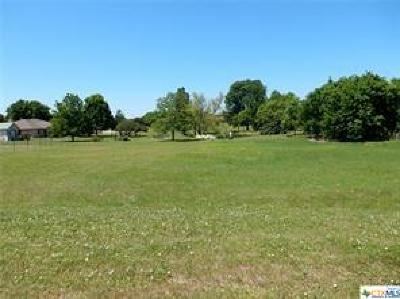 Residential Lots & Land For Sale: 407 E Avenue A