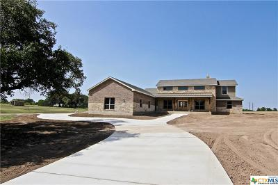 Belton Single Family Home For Sale: 1176 Heritage Lane