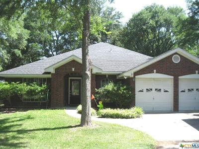 Belton Single Family Home For Sale: 1016 Benchmark Trail