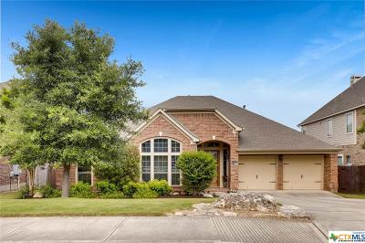 San Antonio Single Family Home For Sale: 25507 River Ranch