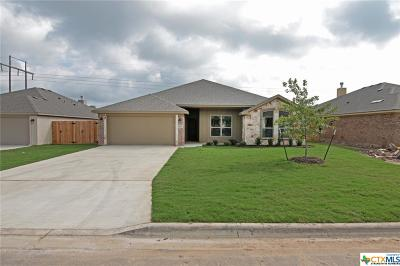 Bell County Single Family Home For Sale: 1815 Broken Shoe Trail