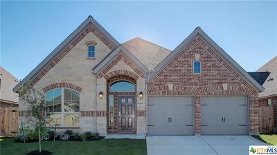 San Antonio Single Family Home For Sale: 9118 Yearling Street