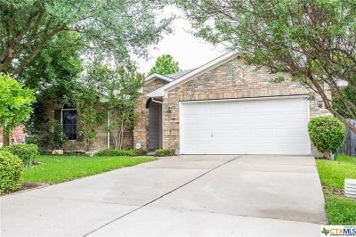 Round Rock Single Family Home For Sale: 1038 Klondike