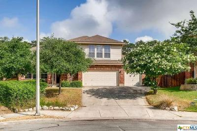 New Braunfels TX Single Family Home For Sale: $359,000
