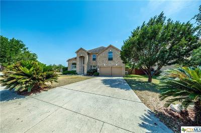 San Antonio Single Family Home For Sale: 130 Impala