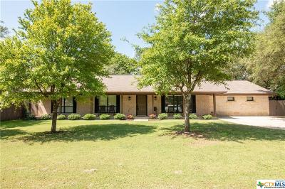 Belton Single Family Home For Sale: 3849 Canyon Heights Drive